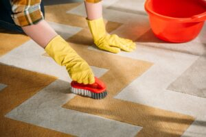 Mansfield TX Carpet Cleaning (8)