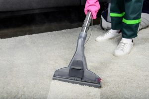 Mansfield TX Carpet Cleaning (11)